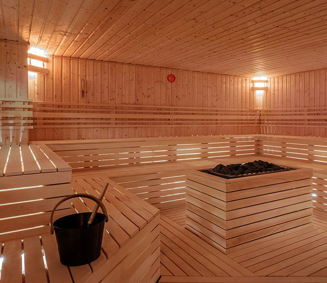 The Sauna World